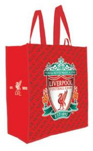 Laminated Non-Woven PP,  large shopping tote